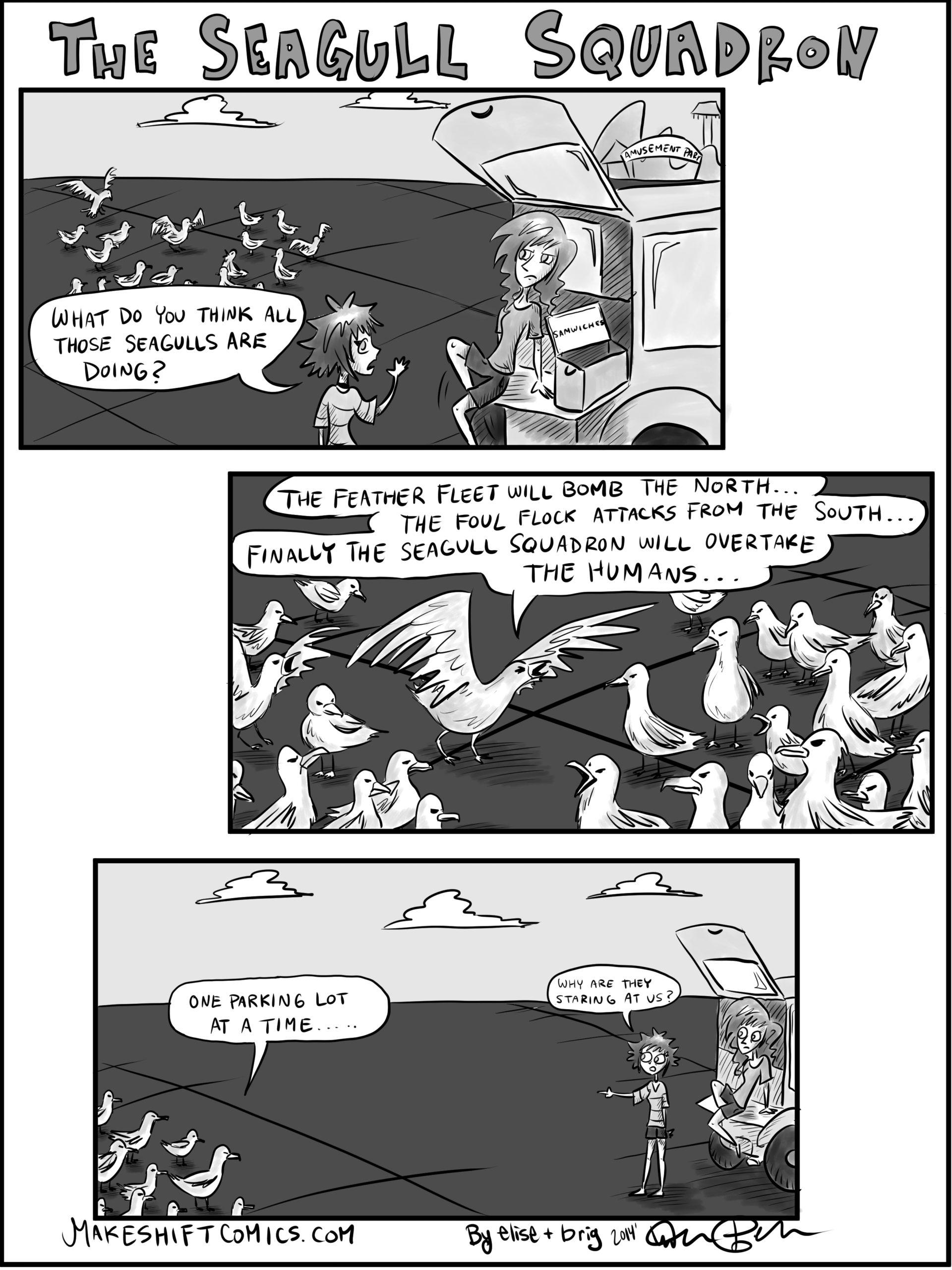 The Seagull Squadron