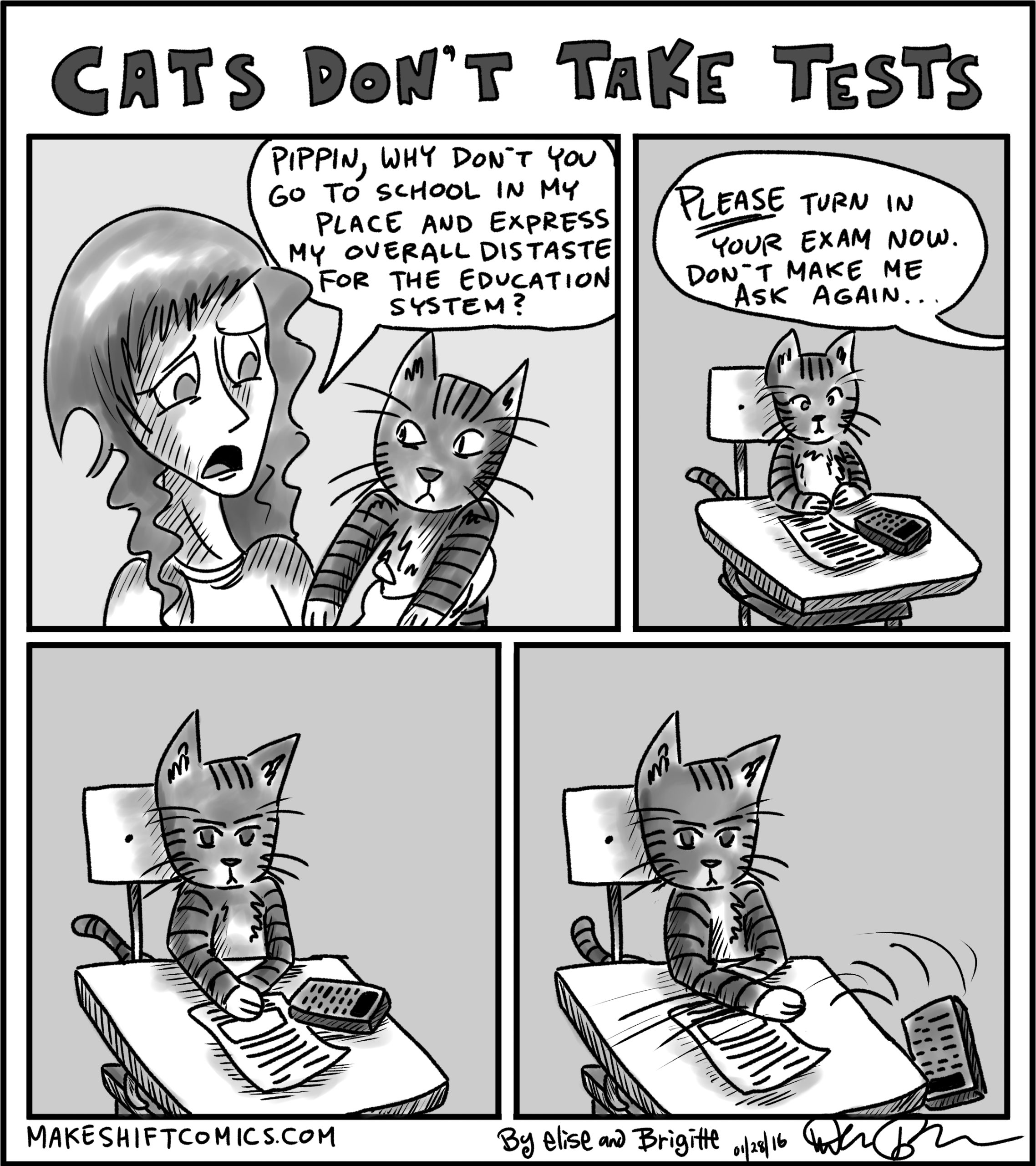 Cats Don't Take Tests